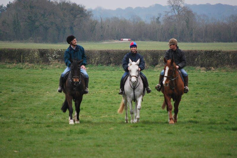 Horse Riding and Pony Trekking