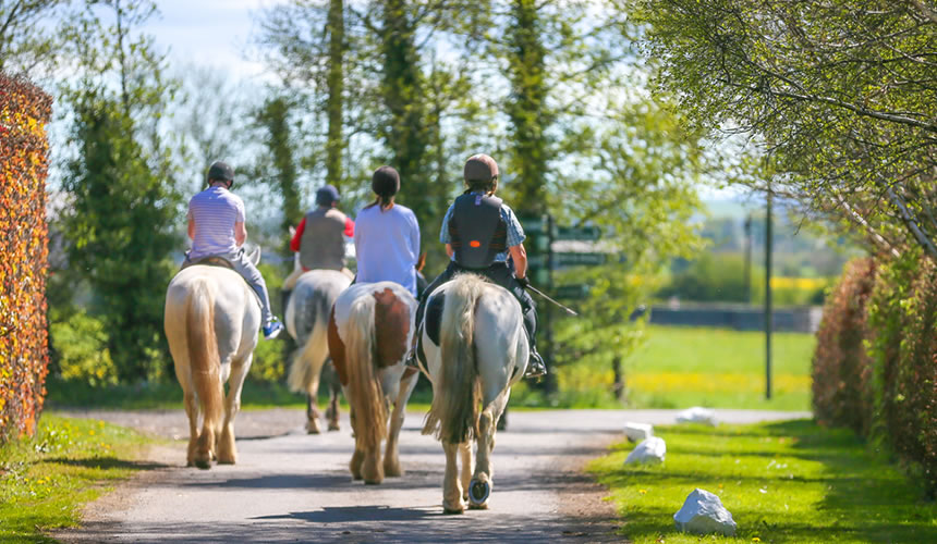 Top Place for Horse Riding near Dublin – Abbeyfield Farm