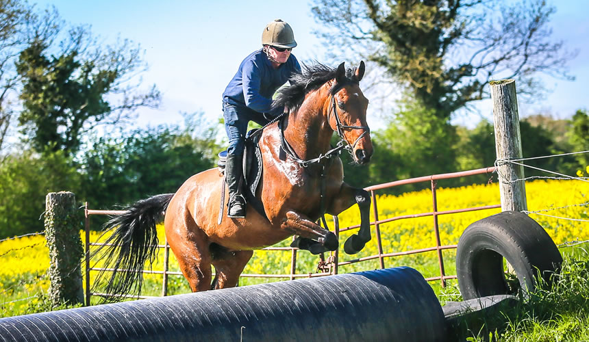 Cross-country Courses & Schooling at Abbeyfield Farm Kildare